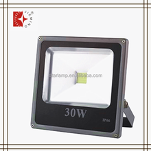 Ningbo Zhejiang China Supplier UL/CE 30w Outdoor Christmas Led Flood Lawn Light Lamp