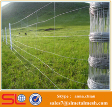 Hot Sale gallvanized Cheap Electric Fence for Cattle