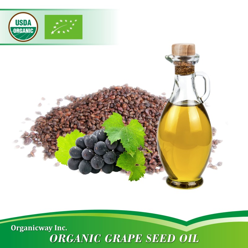 NOP EU Certified Organic Grape seed oil