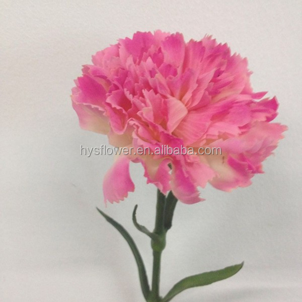 NEW PRODUCT single custom colors preserved real touch carnation flower
