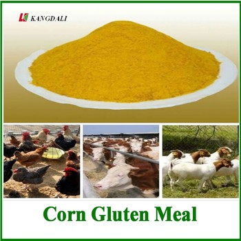 Factory Direct Provide Yellow Corn Gluten Meal