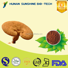 Improving Blood Synthetic DNA/RNA Dark Brownish Powder Reishi Mushroom Extract