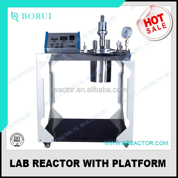 Biodiesel reactor for 2L laboratory testing reactor