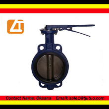 Iron butterfly valve bare shaft hard sealed butterfly valve