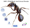 100% Wild black ant powder