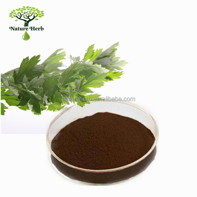 Nature Chinese Herbal Wormwood Leaf P.E. 20:1 Powder