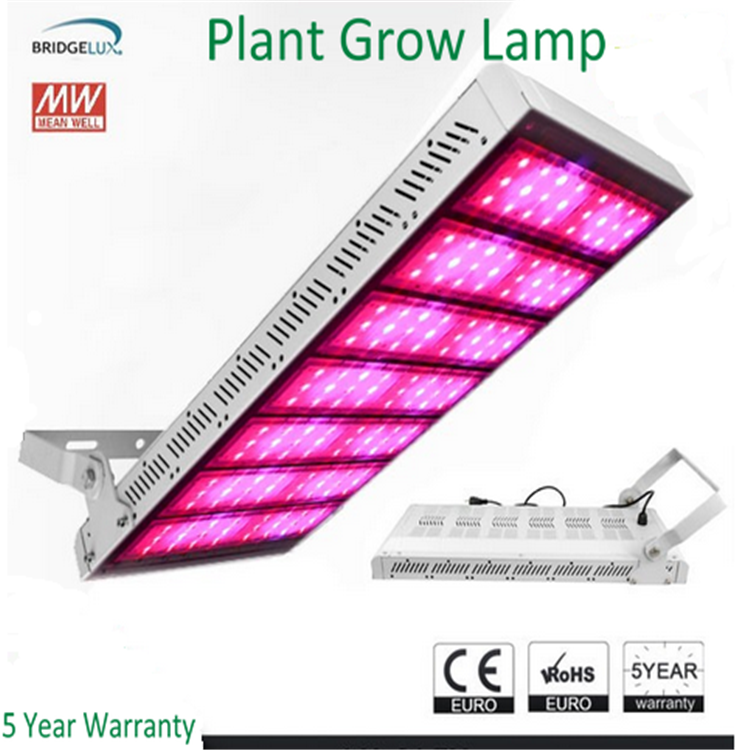 Factory Direct Sale 800W 400W LED Grow Light , cob led grow light , apollo led grow lights