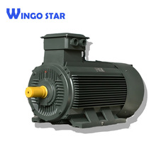 IE2/IE3 Three Phase construction Squirrel Cage Fan Induction Electric Motor