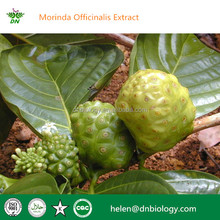 100% natural pure Morinda Root Extract,Radix Morinda Officinalis Extract