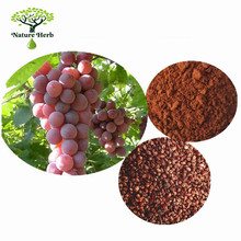 Health First French Grape Seed Extract Capsule