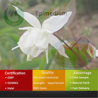 Chinese Traditional Herb Medicine Epimedium