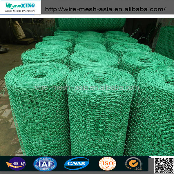 High Quality Hexagonal Wire Mesh/bird cage wire mesh/Chicken Cage (factory price)