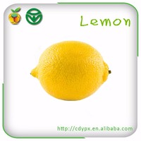 2015 organic fresh sour fruit yellow dress lemon for exporting