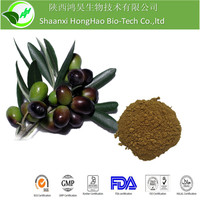 Pure Natural Olive Leaf Oil Extract Oleuropein 25%