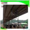 AC electric current type and axial flow dairy dan /cow shed fan