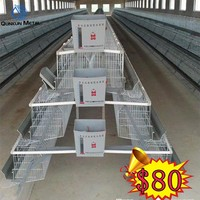 cobb-500/pdf quail farming/cages bird