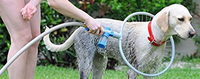 Pet Cleaning Ring Dog Shower Stocked From Direct Factory