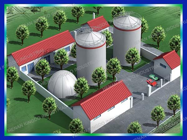 Farm Waste Generation Electricity Best Biogas Generator Price Small Biogas Plant Mini Biogas