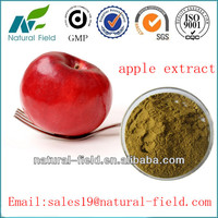 prompt delivery and best price for apple extract procyanidin b2