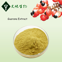100% Natural Guarana Extract Powder
