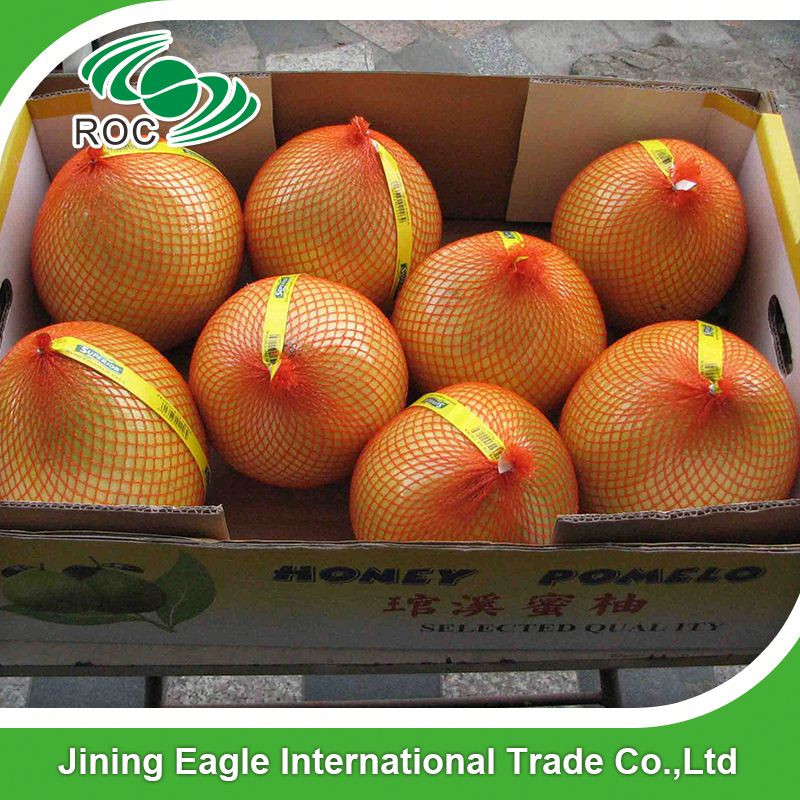 Chinese export factory price fresh pomelo fruit