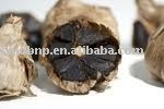 Natural and pure Fermented black garlic-powder
