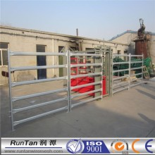 Hot sale galvanized cattle equipment crush