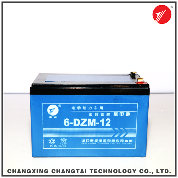 Rechargeable Sealed Lead Acid 12v12ah battery for Security System
