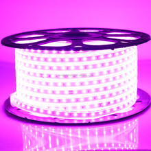 CE/ROHS/UL ul listed 6mm wide self adhesive 12V 48W Side Emitting View 120 led 2400k warm white led strip lighting