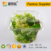 PET transparent plastic vegetable salad clamshell container
