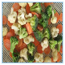 Hot sale New arrival fresh Frozen IQF California Mixed Vegetable