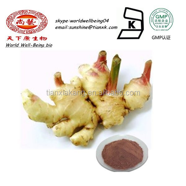 100% pure ginger powder Ginger Root Extract Powder Gingerols ginger health benefits
