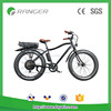 /product-detail/high-quality-48v-1000w-electric-bicycle-60674509944.html