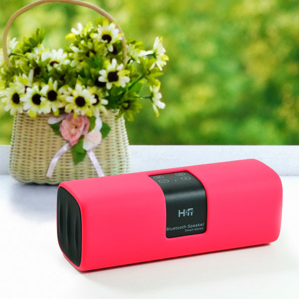 Powered Subwoofer Professional Wireless Bluetooth Speaker with Microphone