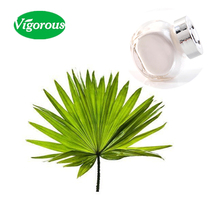 saw palmetto extract/saw palmetto/saw palmetto fruit extract