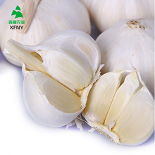 Factory supply high quality fresh natural garlic price for sale
