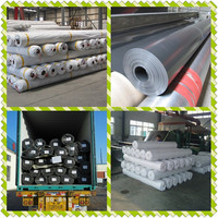 1-4mm HDPE/LDPE membrane roll for pond