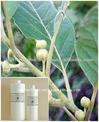 Pure Terminalia Chebula Fruit Extract Powder