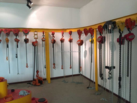 5 Ton Chain Block Hoist,Chain Pulley Block