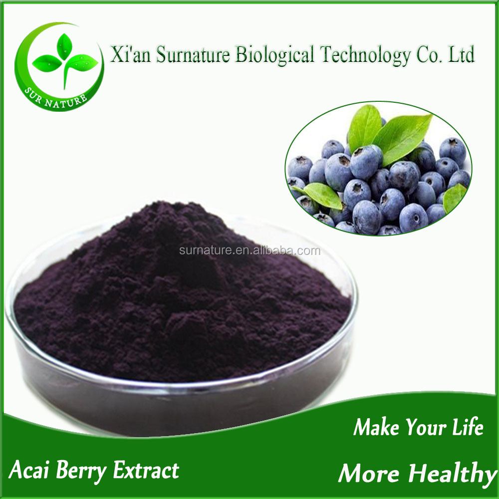 Hot sales acai berry powder brazil/acai berry wholesale