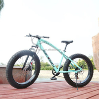 XDC01 13 available Colors aggressiveness 4 speed in stock beach cruiser bike fat