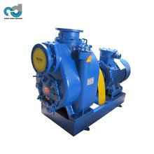 Self-priming Electric Water Pump Drawing for Irrigation