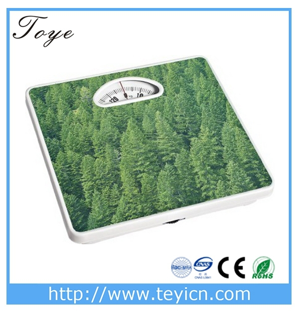 FOREST FEATURE TOYE MECHANISTIC BATH BALANCE 130 KILOGRAM
