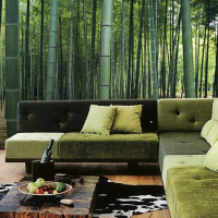 Bamboo wallpaper 3D bamboo wall mural Bamboo scenery of wallpaper