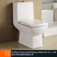 Ceramic Economic Siphonic One Piece 3/6L Dual Flush Toilet (ET-J1166)