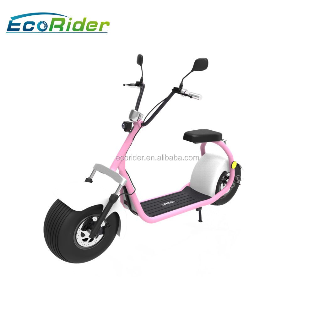 EcoRider EEC Certificate 18 inch fat tire citycoco model LT019 with double seat and mirrors, two wheel electric scooter for sale