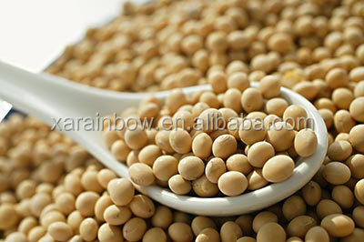 High quality Soybean oil extract 95% Stigmasterol /soybean phytosterol with best price