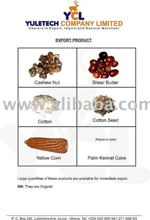 cotton seed,palm kernel cake, shea nuts cashew nuts,corn