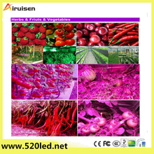 1000w600W 800W LED Grow Light Full Spectrum for Plants Veg and Flower, Added Daisy Chain Function, and Larger Size Plant Light