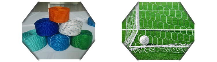 Hdpe Vegetable Support Nets Plastic Nets For Vegetable